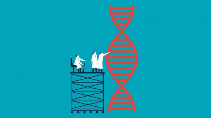 Saccharomyces Genome Database